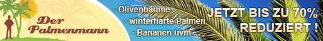 Palmenmann