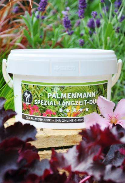 Palmenmann Spezial Langzeit-Dünger (50 Stück)