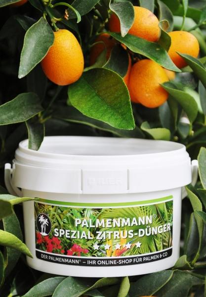 Palmenmann Spezial Zitrus-Dünger (250g)
