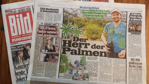 Palmenmann_Bildzeitung_020614