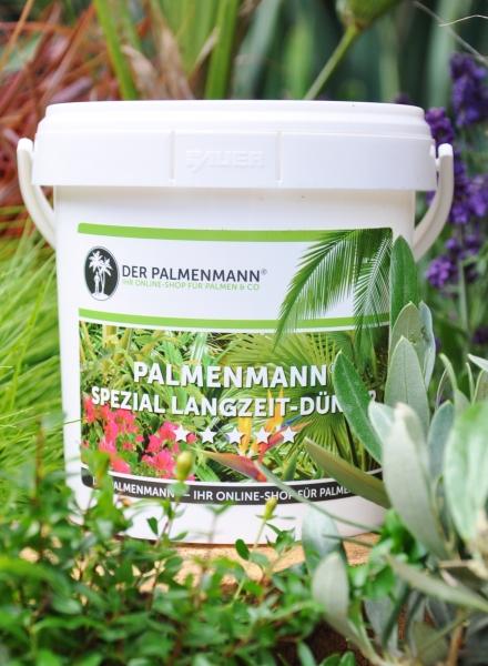 Palmenmann Spezial Langzeit-Dünger (100 Stück)