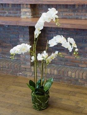 Orchidee (Kunstpflanze)