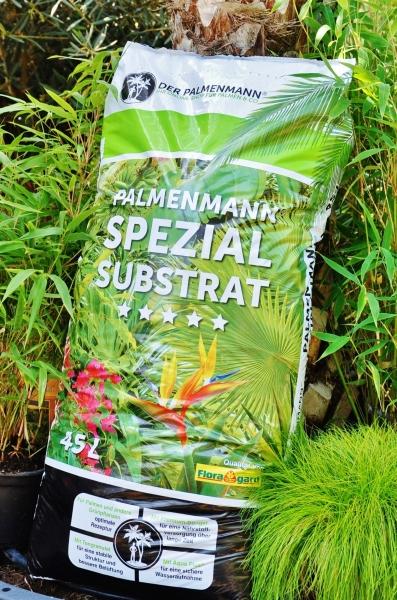 Palmenmann Spezial-Substrat
