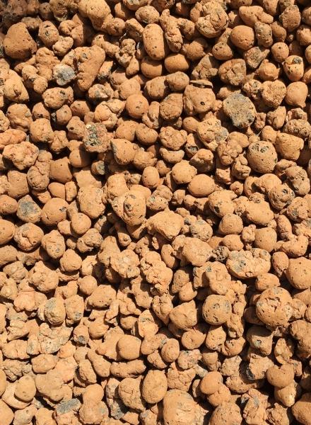 Blähton (Lamstedt Ton) für Hydrokultur 50 Liter
